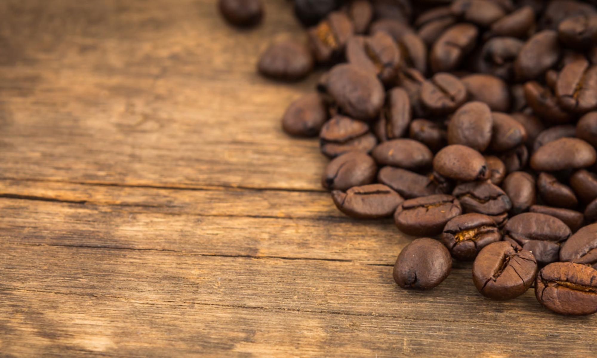 Mula Terca Coffee Roasters